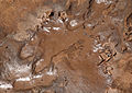 ILRI, Stevie Mann - Footprints in a Malawi village in the rainy season.jpg