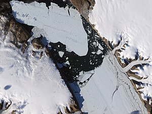 Petermann Glacier - Natural-colour satellite image of the ice island that calved off the glacier on August 5, 2010.