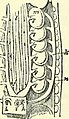 "Image from page 521 of ""On the anatomy of vertebrates (electronic resource)"" (1866) (14755596345).jpg"