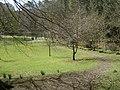 In Hay Lodge Park - geograph.org.uk - 1236273.jpg