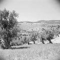 In het landschap van Gilead, Bestanddeelnr 255-5687.jpg