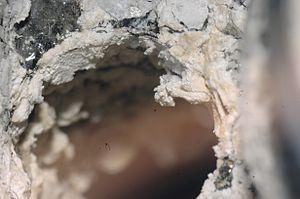 Inside of Rear Screw Hub Holes seq-02a (DSC 0030).jpg