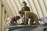 Integrated Training Exercise 2-15 150217-F-AF679-470.jpg