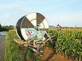 Irrigation par arroseur (Loiret, France, août 2015)-H.jpg