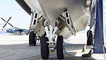 JMSDF US-1A(9089) nose landing gear left front view at Iwakuni Air Base September 14, 2014.jpg