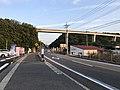 Japan National Route 317 and Tatara Bridge.jpg