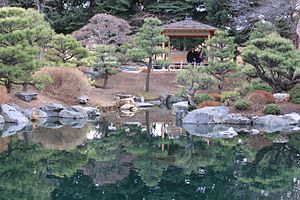 Denver Botanic Gardens - The Japanese Garden at the Denver Botanic Gardens