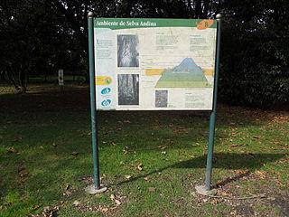 Archivo jard n bot nico bogot letrero ambiente selva for Caracteristicas de un jardin botanico