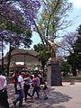 Jardín Hidalgo.jpg