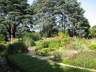 Jardin botanique de Lyon - Alpine garden in the Jardin botanique de Lyon