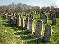 Jewish cemetery - panoramio (1).jpg