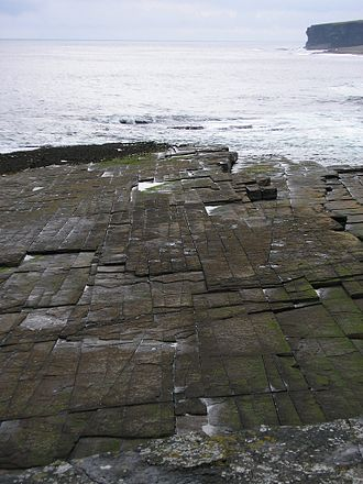Joint (geology) - Orthogonal joint sets on a bedding plane in flagstones, Caithness, Scotland