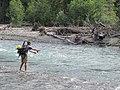 Josh Fishing Elwha salmon river (22350613673).jpg