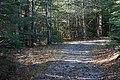 Kabeyun Trail (1872362800).jpg