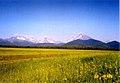Kamchatka Oleg Zaporozhets (6383855451).jpg