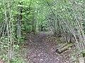 Karl-Pfrommer-Weg - panoramio (1).jpg