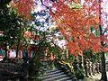 Kasuga Taisha, Nara (15711281648).jpg