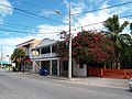 Key West Historic District 535.jpg