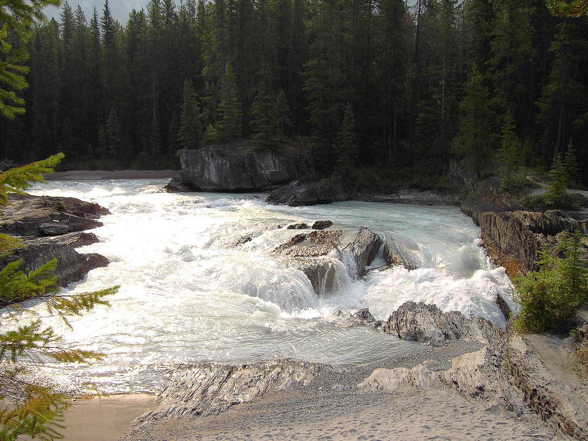 River: Kicking Horse River