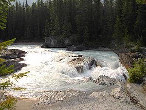 Kicking Horse River - Kicking Horse River