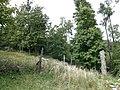Klenová - panoramio - Luboko87 (7).jpg