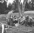 Kosci pri počitku, košnja pri Poljancu, Male Lipljene 1964 (2).jpg