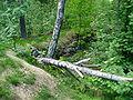 Krepost Sveaborg herttoniemi2.JPG