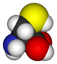 L-cysteine-3D-vdW.png