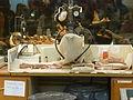 Laboratorio del Museo Feruglio 02.JPG