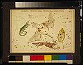 Lacerta, Cygnus, Lyra, Vulpecula and Anser.jpg