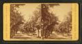 Lafayette St, by Cousins, Frank, b. 1851.png