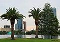 Lake Eola Park, Orlando, Fl 03.JPG