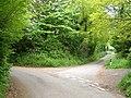 Lane junction, West Hatch - geograph.org.uk - 171590.jpg