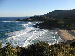 Royal National Park Protected area in New South Wales, Australia
