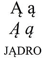 Latin small and capital letter a with ogonek.jpg