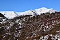 Le Mont St Honorat.jpg
