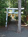 Le Temple Shintô Futagawa-hachiman-jinja - Le Temple Shintô Wakamiya-jinja.jpg
