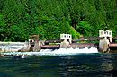 Leaburg Dam (Lane County, Oregon scenic images) (lanDA0035).jpg