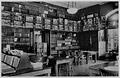 Library BostonNaturalHistoryMuseum BSNH 1930.png