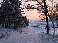 Linga Hlincea (sat linga Iasi), vedere spre Fortus, iarna - panoramio.jpg