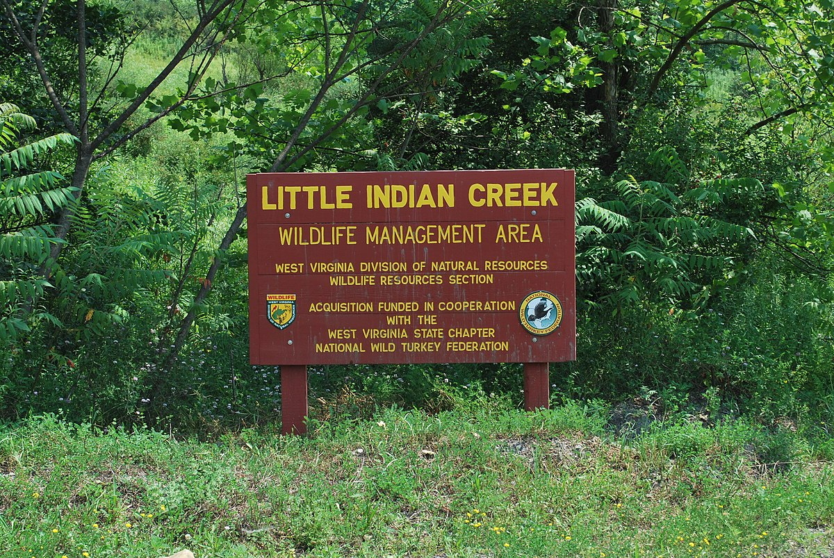 Little Indian Creek Wildlife Management Area - Wikipedia
