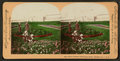 Little florists. Washington Park, Chicago, Ill., U.S.A, by Keystone View Company.png