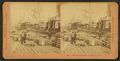 Loading cotton, New Orleans, U.S.A, by Kilburn, B. W. (Benjamin West), 1827-1909.png