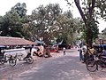 Local Road - Dhobi Ghat Area - Barrackpore Cantonment - North 24 Parganas 2012-05-27 01244.jpg