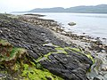 Loch Caolisport - geograph.org.uk - 795429.jpg