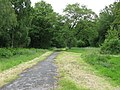 London Loop footpath across Coulsdon Common - geograph.org.uk - 1349132.jpg