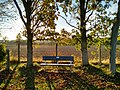 Long shot of the bench (OpenBenches 9433-1).jpg