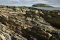 Looe Island - geograph.org.uk - 1242110.jpg