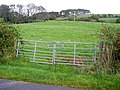 Looking up Panteth Hill - geograph.org.uk - 565275.jpg
