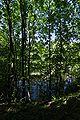 Lueneburg IMGP9697 wp.jpg